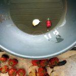 Pomodorini caramellati